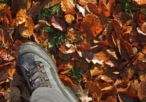 Herbstschuhe II